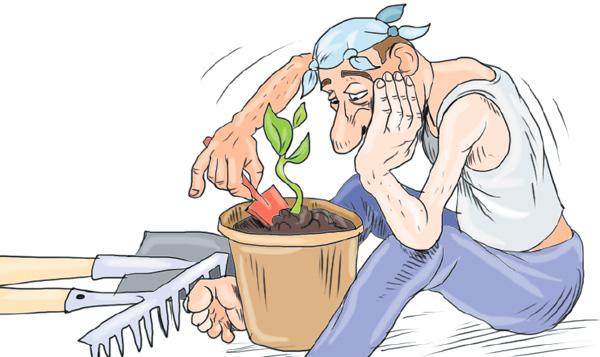 Открытки для, прикольные картинки про садовников